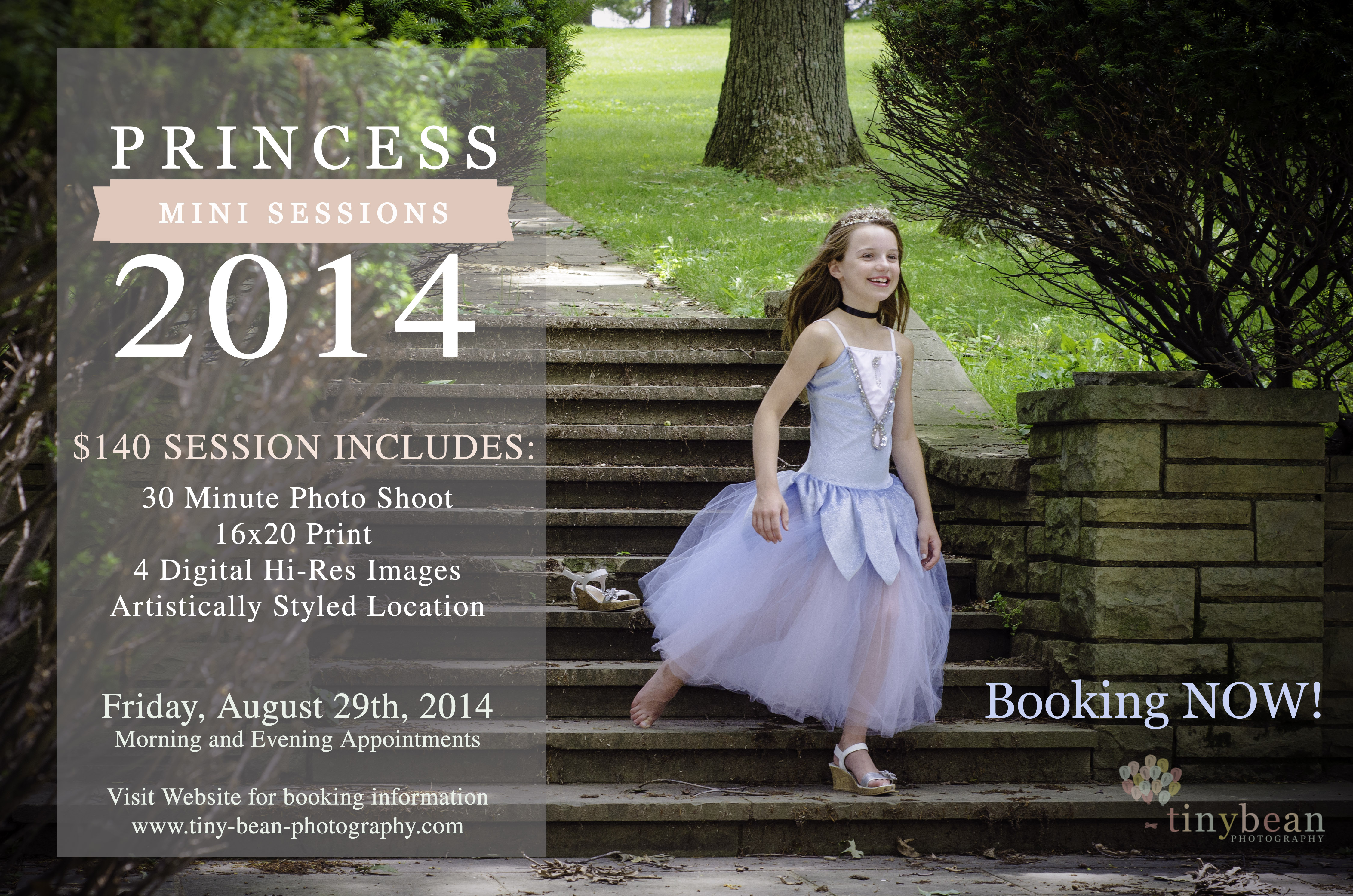 Princess Mini Session Pittsburgh Child Photographer Cinderella girl photography Pittsburgh PA kids photography